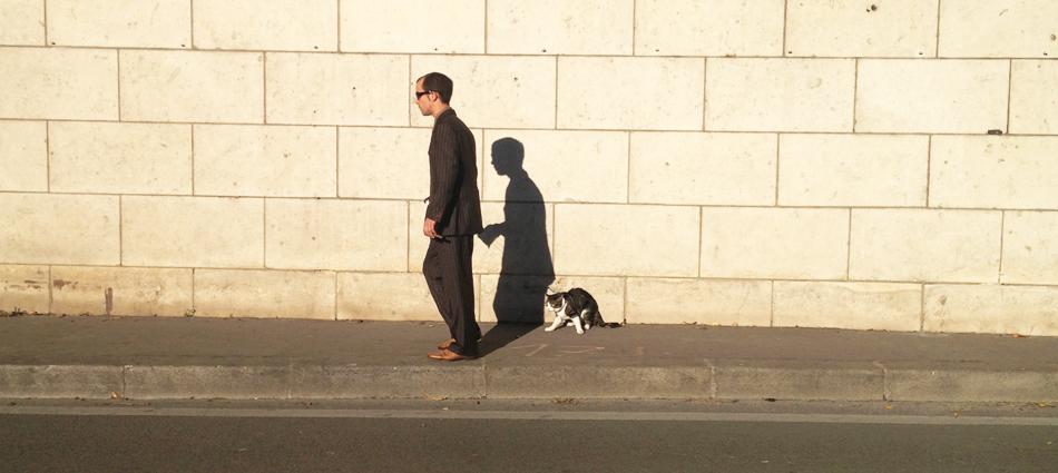 Promenade avec le chat