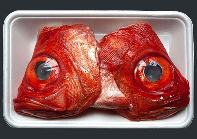 g-fish-heads640